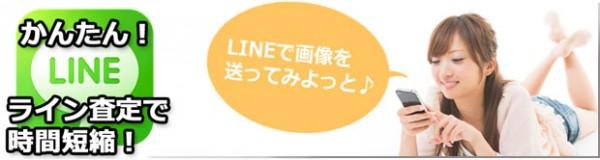 line-annai-2